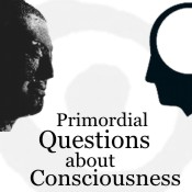 Primordial Questions about Consciousness